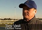 Melbourne Cup Carnival - Trainer Tony Vasil