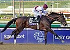 2012 Breeders' Cup - Day 1 Wrap