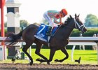 Juvenile Fillies Turf Looms Serious Scramble
