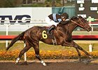 Shared Belief Puts CashCall Futurity in Bank