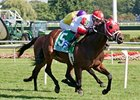 Admiral Kitten Tops John B. Connally Turf Cup