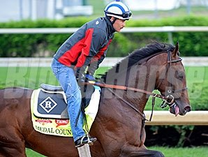 "Medal Count<br><a target=""blank""http://photos.bloodhorse.com/TripleCrown/2014-Triple-Crown/Kentucky-Derby-Workouts/i-f3xcvcm"">Order This Photo</a>"