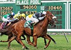 FOX Sports 1 to Cover United Nations Stakes