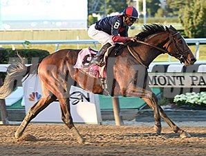 Tonalist won the 2014 Jockey Club Gold Cup Stakes.