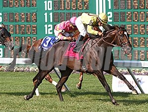 Guys Reward wins the Oceanport Stakes.