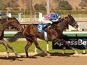 Awesome Baby Goes Long in Santa Ysabel Stakes