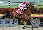 Brown Mulls Options for Normandy Invasion