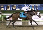Forest Lake, Waha Wild Win Evangeline Stakes