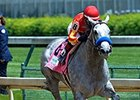 Midnight Lucky Rocks Humana Distaff Return