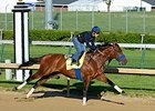 Sadler Sends Candy Boy to Final Derby Drill