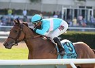 U.S. Juvenile Turf Fillies Await Euro Attack