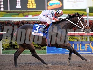 Tackleberry won the 2011 Sunshine Millions Classic.