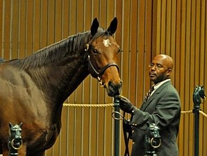 Get Rich Quick, Weanling Shine at Keeneland