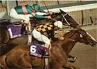 Phone Chatter ('93 Juvenile Fillies)