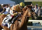 Wise Dan Works, Fourstardave Field Shapes Up
