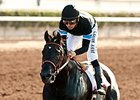 Pacific Classic Next Stop for Shared Belief