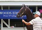 Keeneland September Sale 2013 Day 4 Wrap-Up