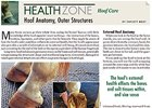 Health Zone: Hoof Care - Hoof Anatomy