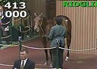 Keeneland Sept Yearling Sale: Hip 413 in the Ring