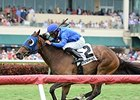 Anjaz Aces Orchid Second Time Around