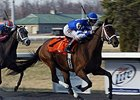 Aurelia's Belle Dances Away in Bourbonette