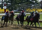 Pari-Mutuel Wagering Increases in January