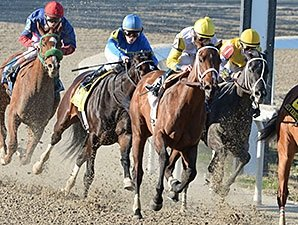 Unbridled Forever Looks to Emulate Dam