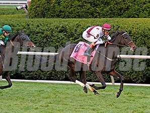Crown Queen rolls to victory in the Queen Elizabeth II.