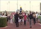 Shea Shea (SAF) wins the Meydan Sprint