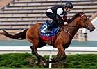 Hong Kong - John Barry & Jimmy Choux