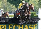 Demonstrative Soars in New York Turf Writers