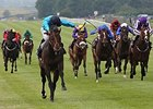 Brown Panther Pounces in Irish St. Leger