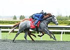 Coastline Works for Blue Grass Start