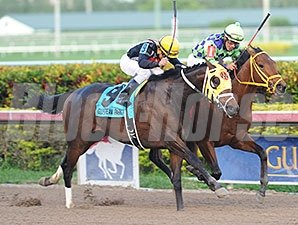 General a Rod (left) fights off Wildcat Red to win the Gulfstream Park Derby.