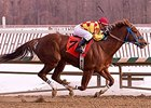 Winning Image Seeks First Graded Stakes Win