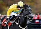 Demonstrative Takes Far Hills' Grand National