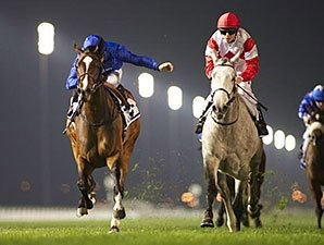 Certify, Mujaarib Win Group Races at Meydan