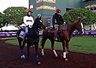 Breeders' Cup: The Fugue Schools at Santa Anita