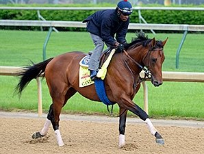 Candy Boy Among 47 West Virginia Derby Noms