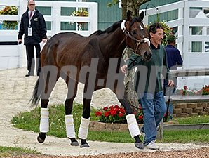 Ria Antonia was one of the Preakness contenders who arrived on May 14.