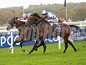 Noble Mission fights off Al Kazeem to win the QIPCO Champion Stakes.