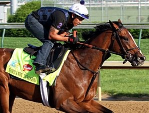 Normandy Invasion Back in Action Feb. 22