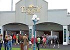 Turfway Reports Handle, Field Size Down