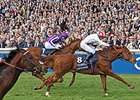 Night Of Thunder Looks to Rebound at Ascot