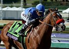 Spendthrift to Stand Goldencents in 2015