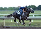Spot Likely for Florida Derby After Big Work
