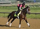 Kentucky Derby News Minute, 4/30/2013