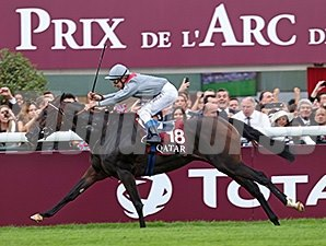 Treve winning the 2013 Qatar Prix de l'Arc de Triomphe.