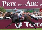 Treve Set for 2015 Bow in May 29 Prix Corrida