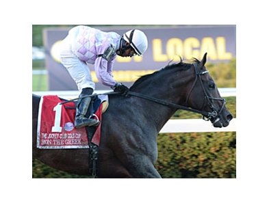 He S Back Ron The Greek Shakes Up Gold Cup Bloodhorse